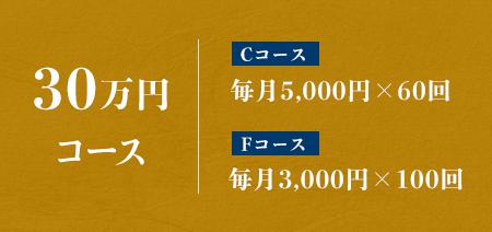 30万円コース